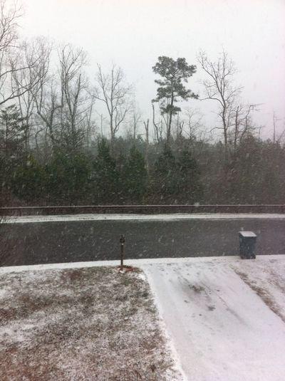 This Snow