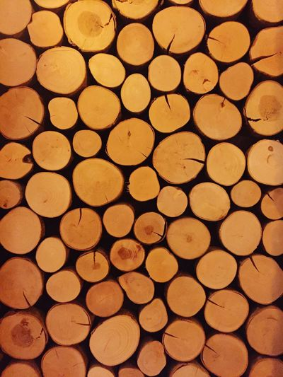 Timber Stack Log Circle Lumber Industry Backgrounds Heap Deforestation Large Group Of Objects Close-up Wood - Material No People Woodpile Gold Colored Forestry Industry Day Outdoors