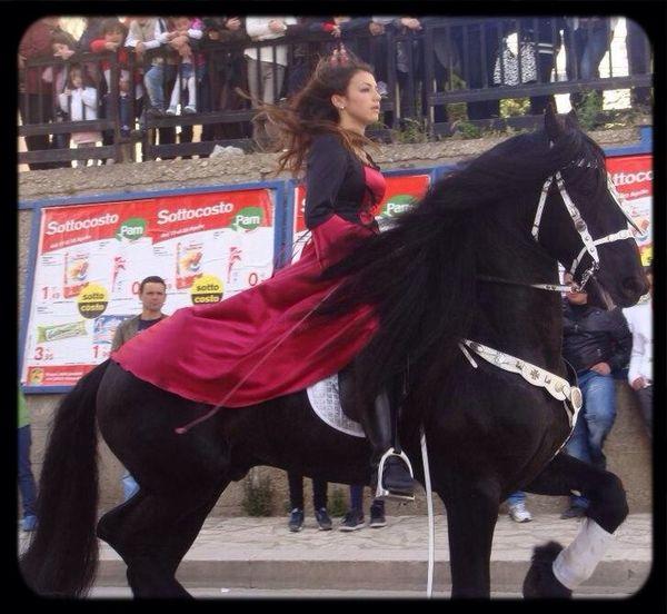 Sicily Festa
