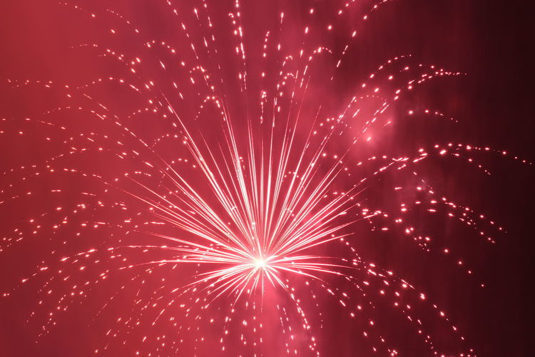 Fire Flower Exploding Firework - Man Made Object Firework Display Flor De Fuego Fuegos Artificiales Long Exposure Red Color Rojo Intenso