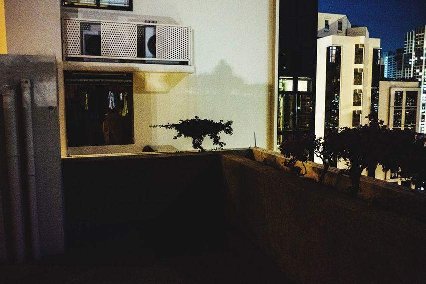 Snaps @ Singapore Singapore 2016 No People Animal Themes Showcase November Street EyeEm Streetphotography Street Photography Street Life Singapore Streettogs Streetphoto_color Showcase Singapore Streets The Week Of Eyeem The Week On Eyem Snapshots Of Life Singaporestreetphotography Fujifilm X70 X70 Here Belongs To Me Singapore Street Photography Enjoying Life Taking Photos