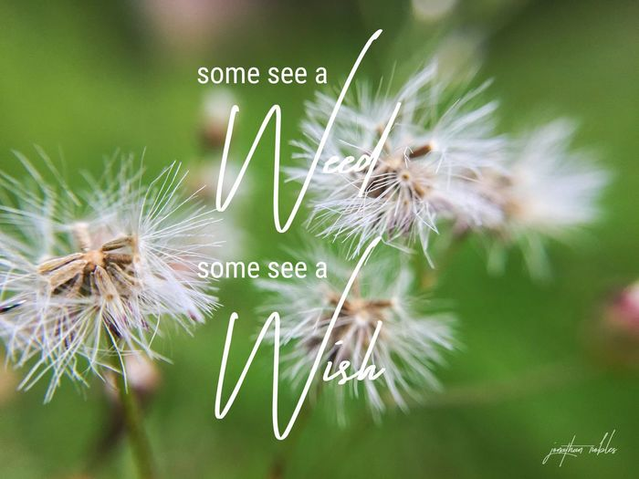 Some see a
