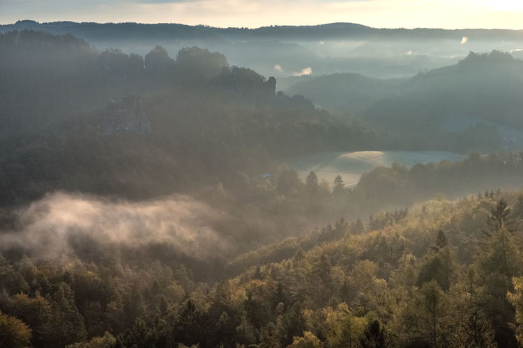 High angle view of trees and mountains in foggy weather