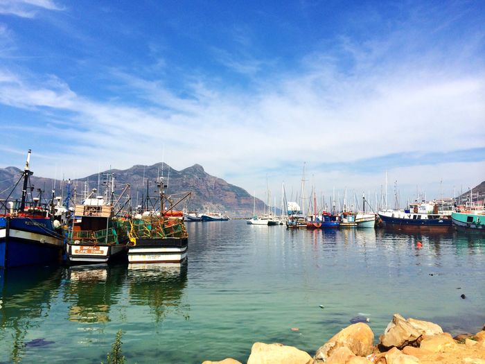 Hout Bay, South Africa Floating Boat Harbour View Harbour Ocean Boats Mode Of Transport Moored Water Cloud - Sky Outdoors Nature Beauty In Nature Mast Day Scenics