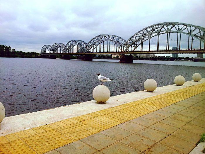 Riga Latvia Nature