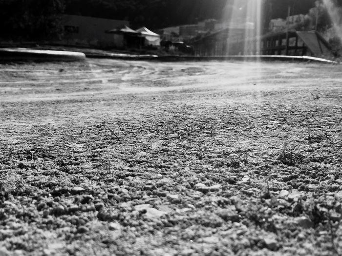 The Street Photographer - 2017 EyeEm Awards Cornaux Radio Controlled Track Earth Sunnyday Paddocks Neuchatel Switzerland Suisse  Buggy E-Buggy Brushless Motor Championnat Suisse Championnat Srcca Ore8 E8OR Outdoors