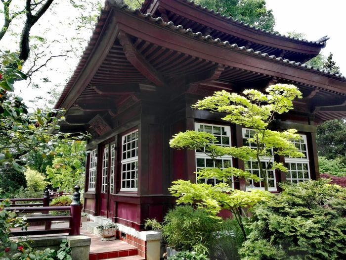 Japanischer Garten In Leverkusen Japanese Garden Architecture Tree Built Structure Building Exterior Day Plant Outdoors Roof No People Growth Nature Sky Green Color The Great Outdoors - 2017 EyeEm Awards Landscape Tranquility Freshness Beauty In Nature Tree Plant Nature Growth
