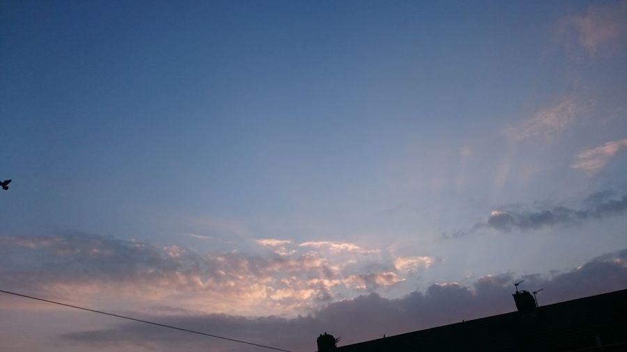 Sunset... Sky