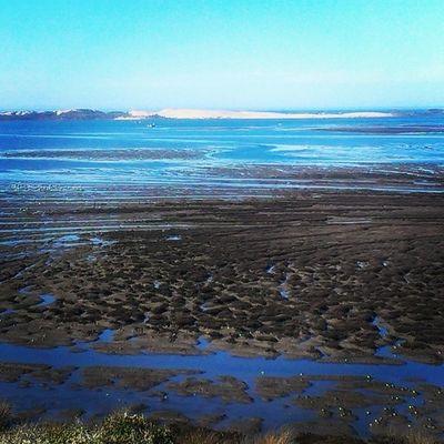 #elfinforest in #morrobay. It's so gorgeous out today! Angelgetaways Ocean California Luxury Ilovecalifornia Morrobay Ca_skies Elfinforest Centralcoast Luxurylife Rrgs Rkoig
