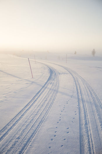 A beautiful, misty morning in the Norwegian hills in winter. White, hazy landscape. Near the small Norwegian town Roros. Nature Winter Snow Landscape Fog White Norway Day