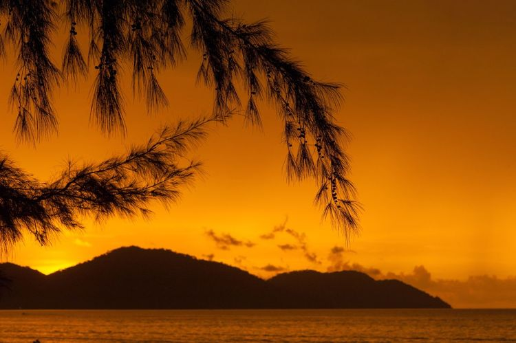 Sunset Scenics Beauty In Nature Mountain Orange Color Nature Sky Tranquil Scene Penang Beach Penang Malaysia Penang Silhouette Idyllic Sea Outdoors No People Mountain Range Travel Destinations Tree Water