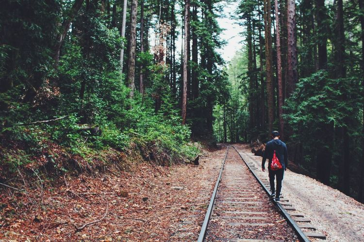 who needs trails when you have train tracks? Forest Hiking Traintracks EyeEmBestPics EyeEm Gallery EyeEm Best Edits EyeEm Nature Lover Eye4photography  EyeEm Best Shots EyeEm Best Shots - Landscape Capture The Moment Forest Path