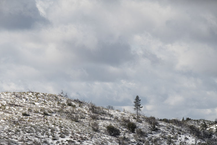 Outlier. Beauty In Nature Cloud - Sky Cold Temperature Day Landscape Mountain Nature No People Outdoors Sky Snow Winter