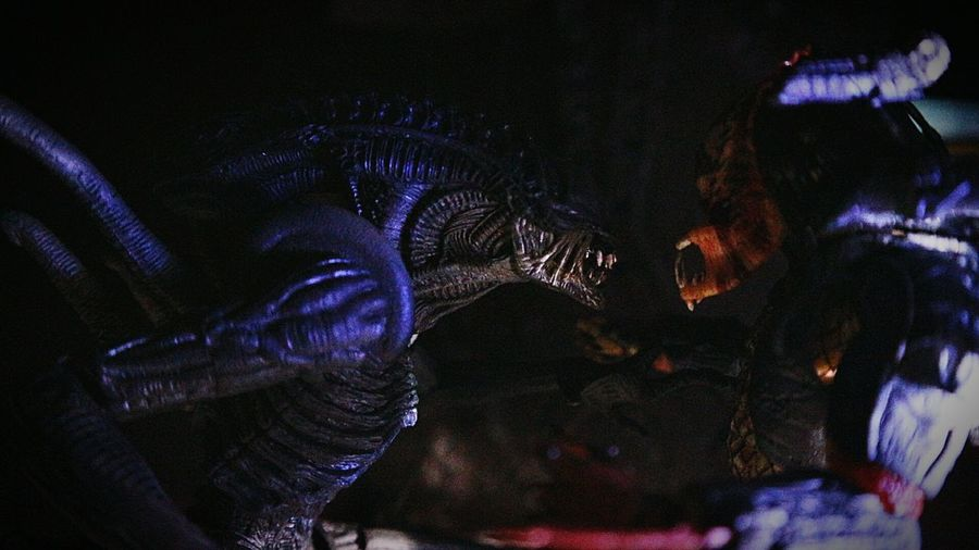 alien vs predator Alien Avp Alienvspredator Predator Necatoys Neca Toys Toysphotography Photography Picture Horror Science Fiction Experimental Photography Hobbies Art Human Hand Popular Music Concert Arts Culture And Entertainment Nightlife Men Close-up