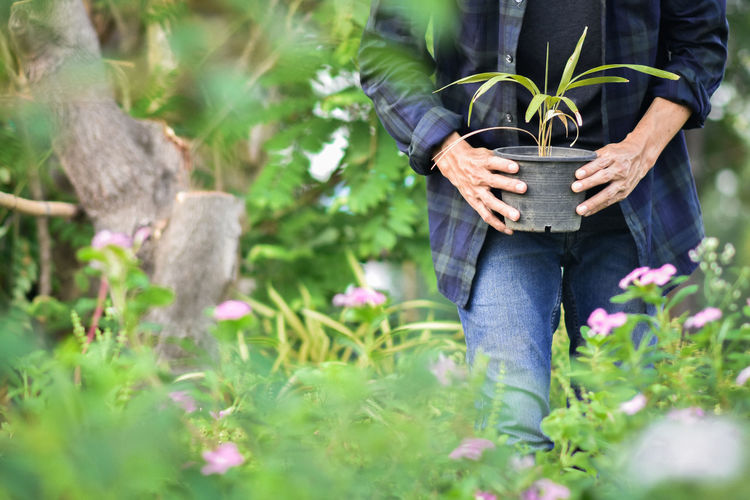 Midsection of person standing by plants