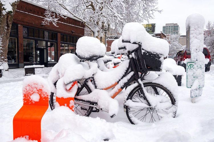 PORTLAND, OR - JANUARY 11: Biketown station in Portland, Oregon under snow after a huge snowstorm seen on January 11, 2017 Architecture Downtown Oregon Pacific Portland Tree Trees Winter Bicycle Cold Cold Temperature Colorful Gray Icy Mode Of Transport Northwest Old Snow Stationary Town Transportation Waterfront Weather White Winter
