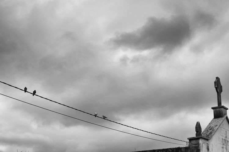 Low angle view of birds perching on statue against cloudy sky