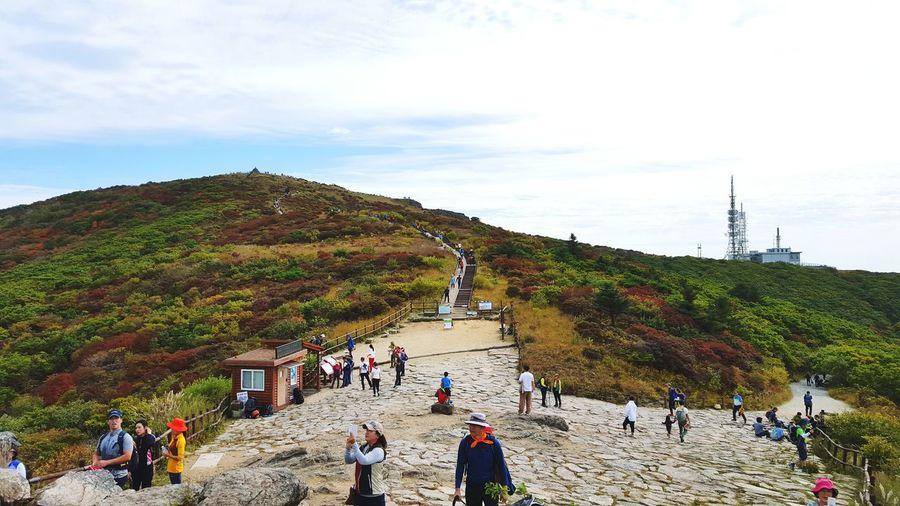 지리산 노고단 Jirisan Mt. Jiri Jirisan Mountain Nogodan Nogodan Park Mountain View