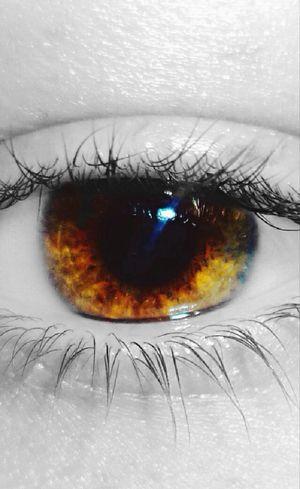 Eyelash Close-up Indoors  Eye Pupil Human Body Part Colour Splash Close Up Human Eye Iris - Eye Real People Eyeball Eyes Are Soul Reflection Eyesight Young Adult Woman Maximum Closeness My Eye Art Is Everywhere The Portraitist - 2017 EyeEm Awards EyeEm Ready   Visual Creativity A New Beginning