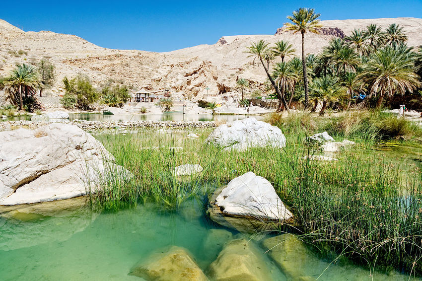 Wadi Bani Khalid - Oasis, lake and river - Oman desert Badi Beauty In Nature Desert Grass Khalid Lake Landscape Mountain Nature Oasis Oman Outdoors Palm Palm Tree River Rock Scenics Stone Tranquil Scene Tranquility Tree Wadi Bani Khalid Wani Water Water_collection