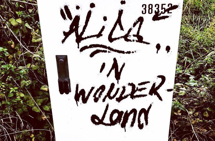 Alice! Western Script Nature Art And Craft Handwriting  Day Sign Graffiti Creativity Outdoors Writing