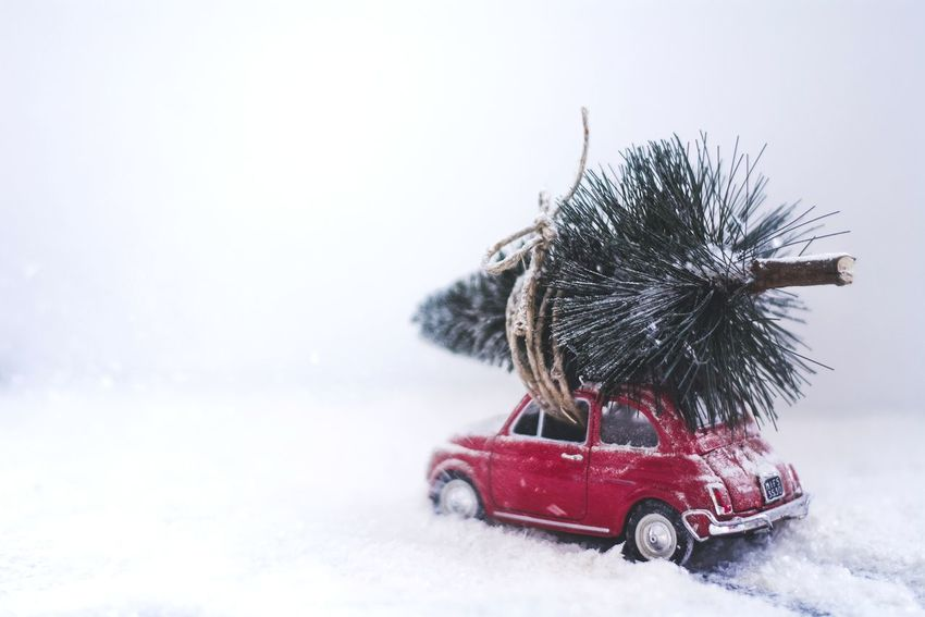 Car Winter Snow Christmas Tree Christmas Countdown Toy Car Fiat 500 Red Pine Tree Cold Still Life Transportation Xmas Christmas Preparations Tree Toyphotography Toy White Background Snowing EyeEmBestPics EyeEm Gallery Nikonphotography EyeEm Best Shots