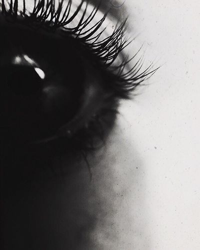 Close-up Selective Focus Fragility Extreme Close-up Focus On Foreground Beauty Eyelash Beauty In Nature