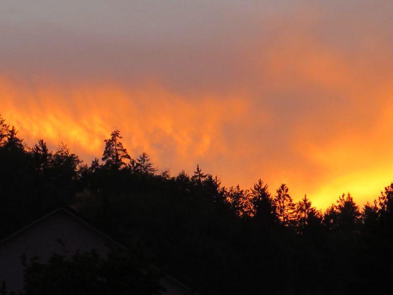Sunset Sunlight Sunset Silhouette Sunsetlover Evening Sky Nature Photography Naturelover Like Fire