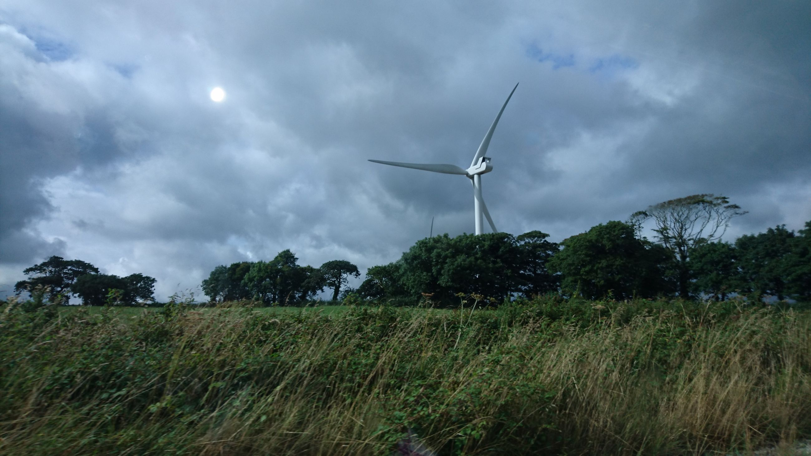 alternative energy, wind turbine, wind power, environmental conservation, fuel and power generation, renewable energy, windmill, rural scene, grass, environment, field, sky, scenics, tranquil scene, nature, tranquility, green color, power in nature, outdoors, plant, sustainable resources, non-urban scene, growth, cloud, wind, cloud - sky, beauty in nature, day, farm, agriculture, solitude, cloudscape