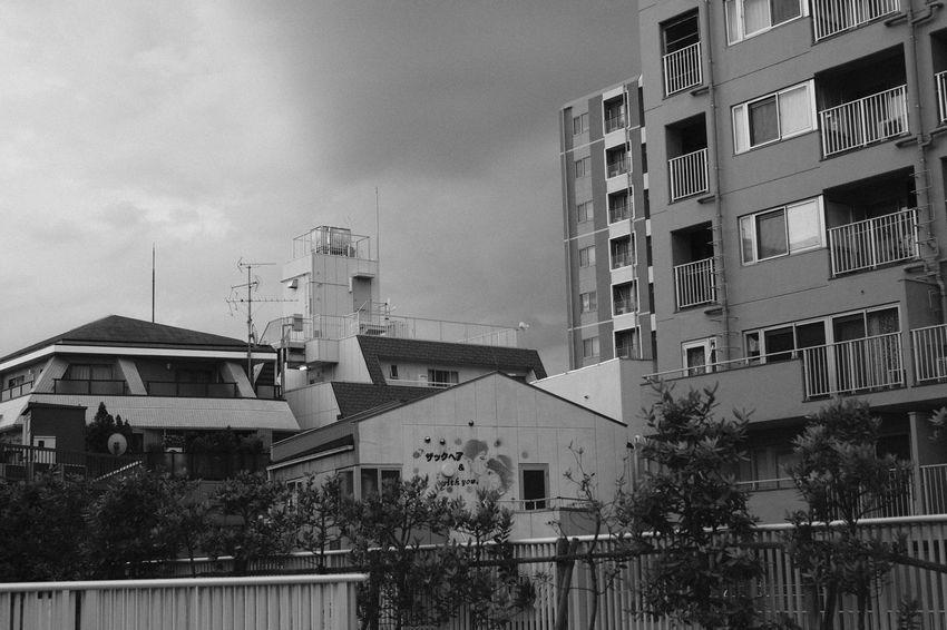 AcroS Fujifilm FUJIFILM X-T2 Fujifilm_xseries GrainEffect Japan Japan Photography Monochrome Monochrome Photography Sky Sky And Clouds X-t2 モノクロ 市川 白黒 Blackandwhite Black And White