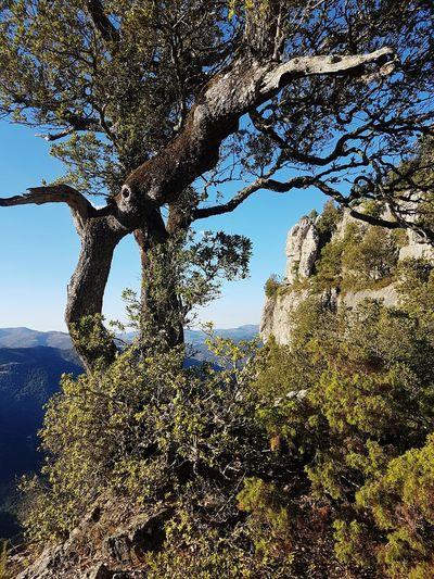Montarbu View from Scala saMarra