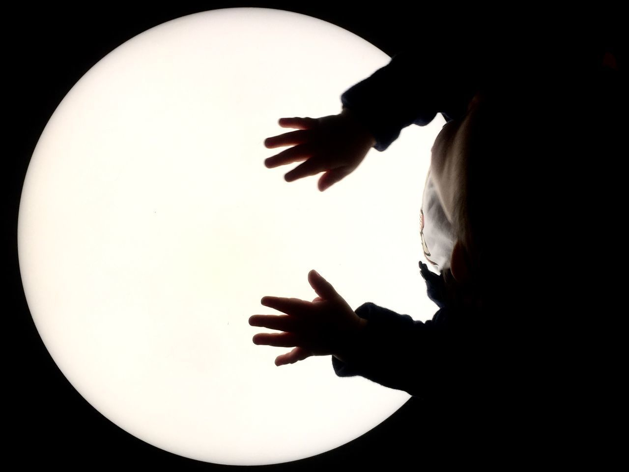 one person, human hand, indoors, hand, real people, silhouette, men, leisure activity, lifestyles, human body part, child, unrecognizable person, studio shot, copy space, gesturing, holding, childhood, lighting equipment, finger, innocence