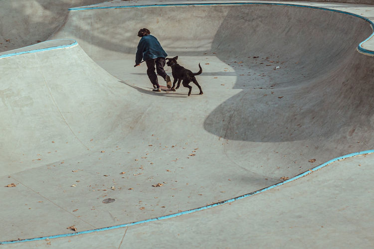 High angle view of people riding dog on street