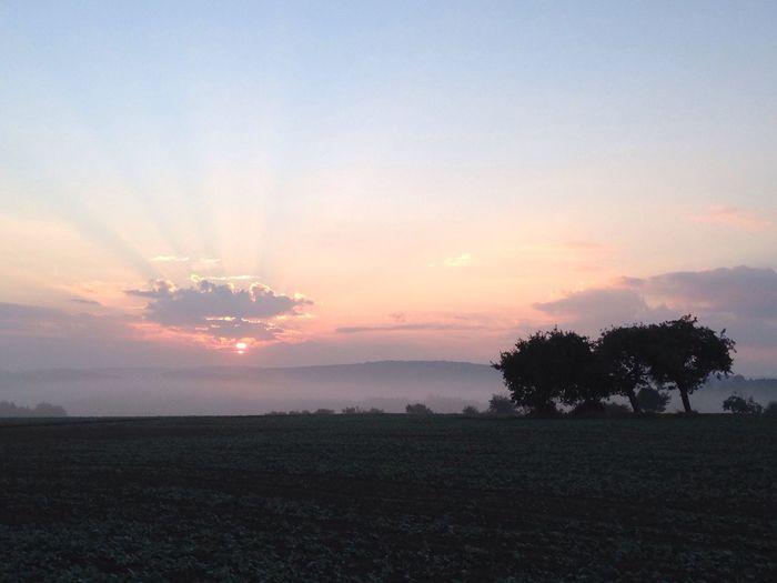 Abendrot im Hunsrück Abendrot Hunsrück Sonnenuntergang