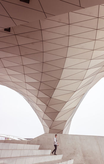 Built Structure Architecture One Person Real People Leisure Activity Lifestyles Walking Standing Arch Wall - Building Feature Day Nature Men Transportation Bridge Connection Sky Modern Outdoors Musée Des Confluences Stairs Geometric Shape Geometry Grid Lines, Shapes And Curves Lines And Shapes Lines