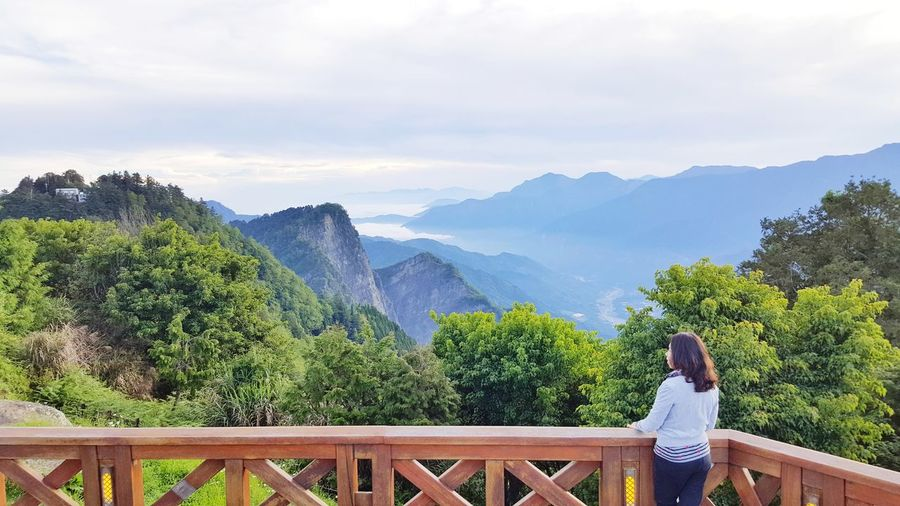 One Person Only Women Mountain People Tree Nature Vacations Women Cloud - Sky Day Standing Outdoors Sky One Mature Woman Only Leisure Activity Nature Healing Relaxing Time Traveler Freshness Tree Sunrise Scenic View Beautiful Nature Alishan,Taiwan Morning View