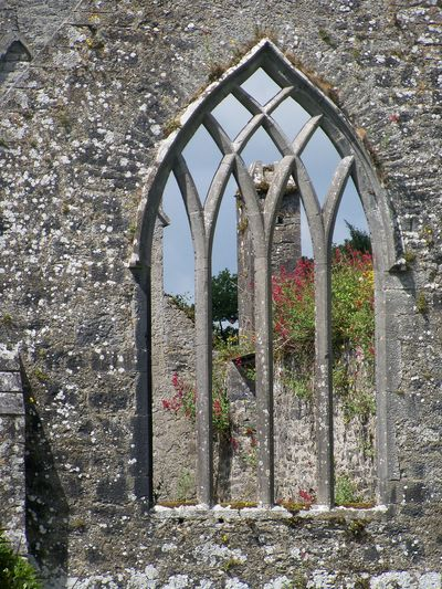Medieval ruins of a Franciscan friary in Adare, Ireland Window, Ruins, Golfcourse, Adare, Ireland, Flowers, Stone, Wall, Plants, Chimney, Frame, Beautiful, Pretty, History, Medieval, Church, Cathedral, Frary, Priory, Franciscan, Catholic, The Past, Travel,tourist On The Way Fine Art Photography Visual Creativity The Traveler - 2018 EyeEm Awards The Great Outdoors - 2018 EyeEm Awards
