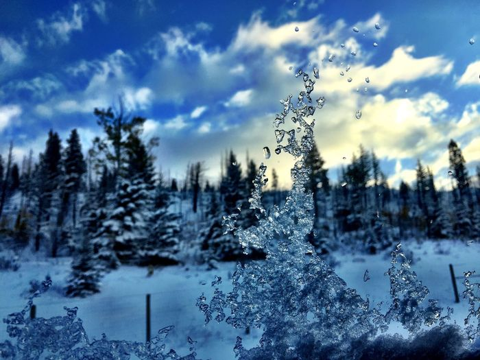 Ice Window View IPhoneography Canada Tree Plant Cloud - Sky Sky Snow Winter Nature Cold Temperature Beauty In Nature Coniferous Tree No People Day Scenics - Nature Growth Pine Tree Tranquility Land Pinaceae Environment Outdoors