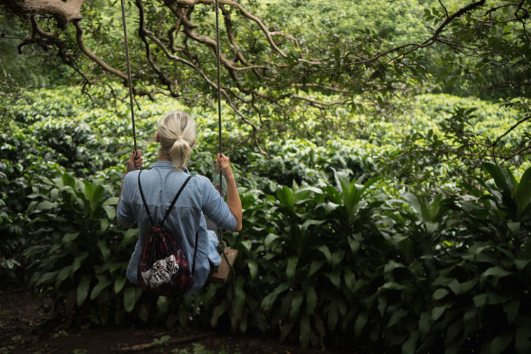 Coffee Plantations Costa Rica Blond Blond Hair Coffee Plant One Person Swing Tree Swing
