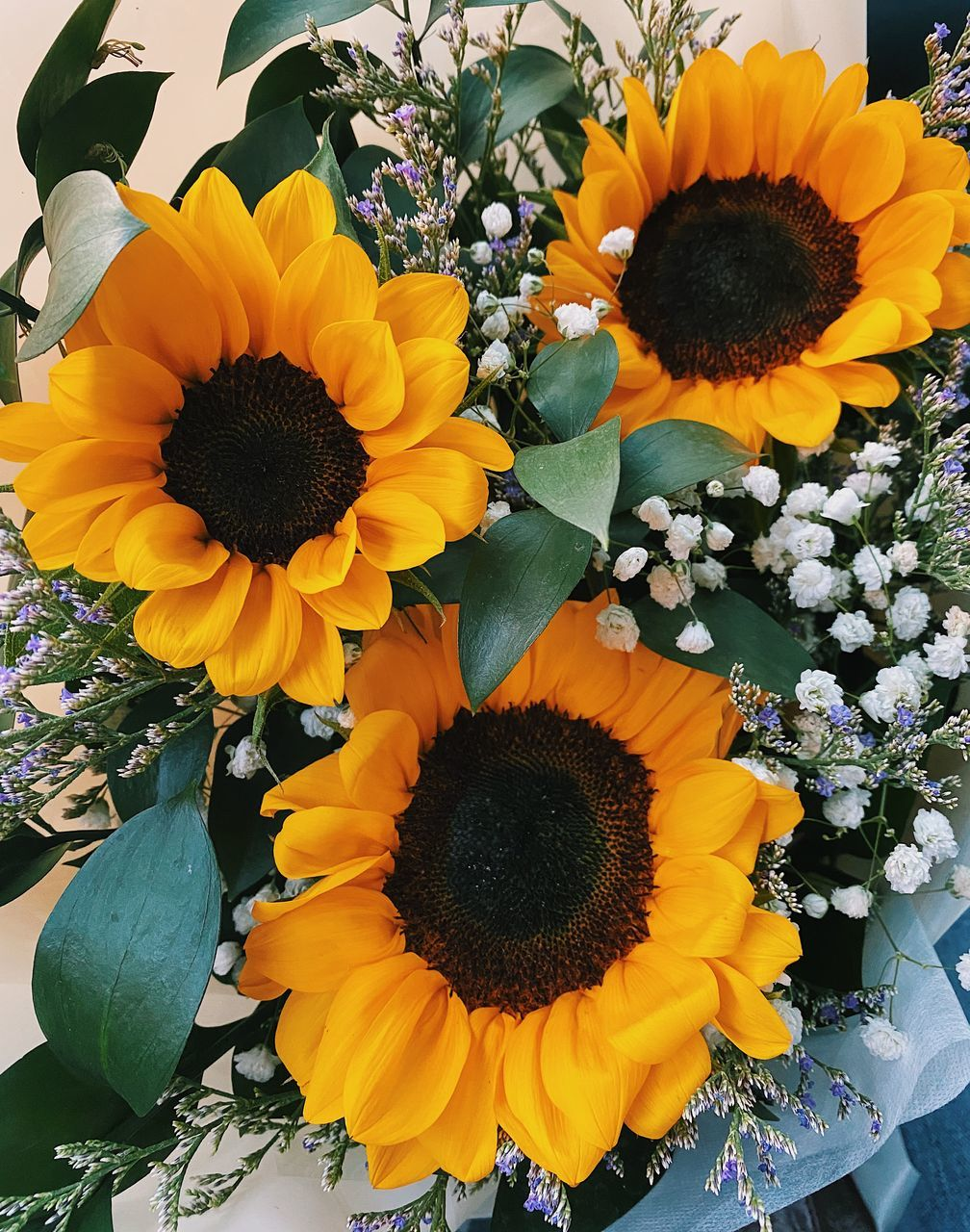 HIGH ANGLE VIEW OF SUNFLOWERS ON SUNFLOWER