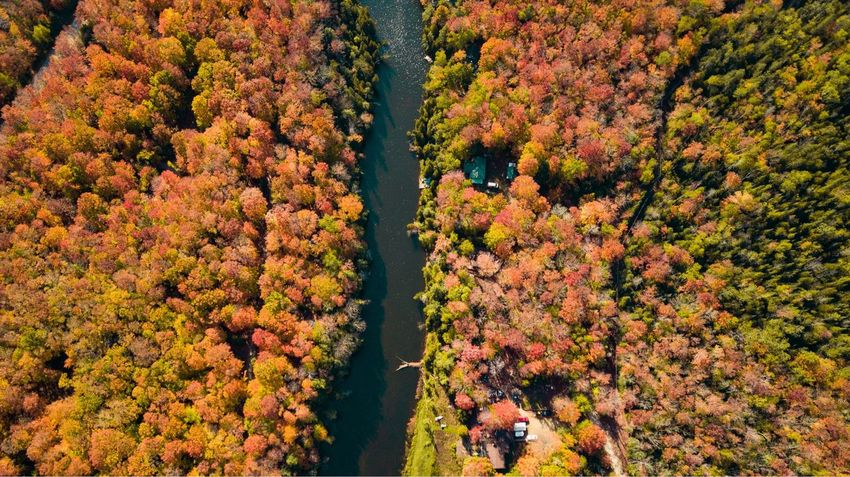 A drone shot of the fall colors Droneshot Dronephotography Aerial View Aerial Photography Aerial Landscape Fall Colors Fall Beauty Canada Ontario Landscape Colors Drone  Aerial Shot Fall Dji Dronestagram Drone  Aerial Shot Plant Beauty In Nature Growth Nature Tranquility Change Day