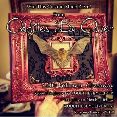 Go follow for absolutely amazing artwork! @odditiesbyoliver Odditiesbyoliver love his stuff.