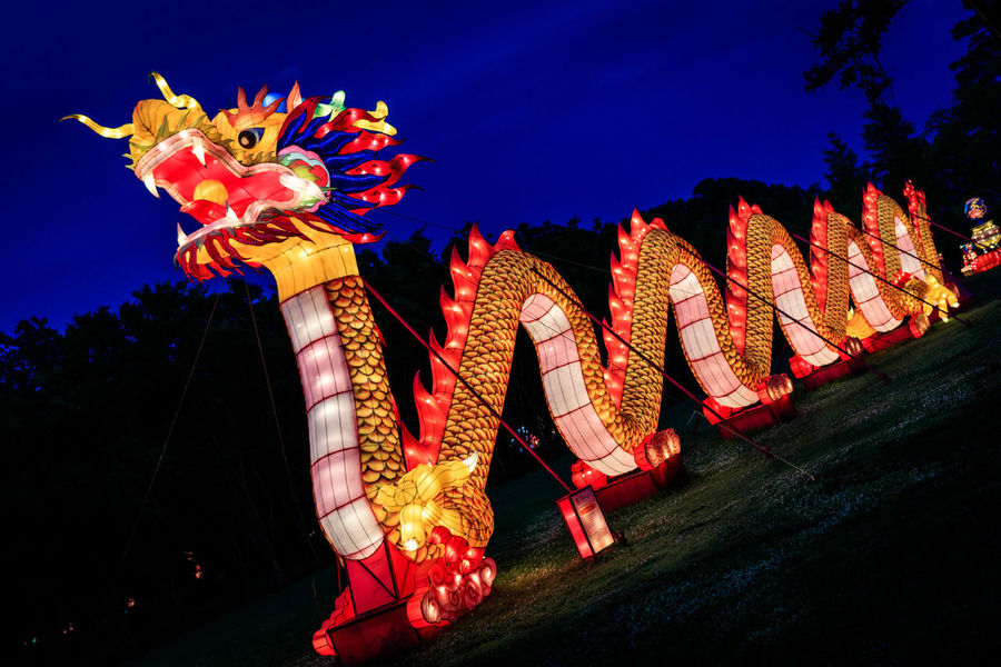 Lantern Asia @ Norfolk Botanical Gardens. #norfolk #norfolkbotanicalgardens #lanternasia2018 #lanternasia #chinesezodiac #lanternfestival #lantern #datenightideas #lights #asia #illuminate #summer #summernights #night #gardens #culture #virginiaevents #nopeople Norfolk Norfolkbotanicalgardens Lanternasia2018 Lanternasia Chinesezodiac Lanternfestival Lights ASIA Illuminate Night Nopeople Gardens Culture Culture And Tradition Colorful Multi Colored Asian Culture Chinese New Year SummerNights Datenightideas Lantern Asian  City Chinese Lantern Chinatown Decoration Paper Lantern Statue New Year