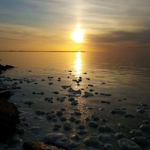 Atardecer en Ansenuza Cordobaquelindaquesos Igerscbaar Sunset Mirequelindomipaispaisano Landscape @puntaencanto Cordobaargentina Reflectiongram