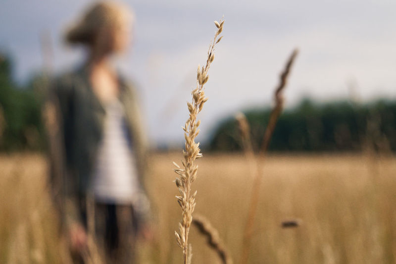 Close-Up Of Crop Growing By Woman On Agricultural Field