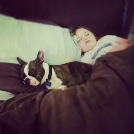 I think I got bed jacked. ♥♥♥ BedHogs Punky Artex GirlsNight Weekends Bonding