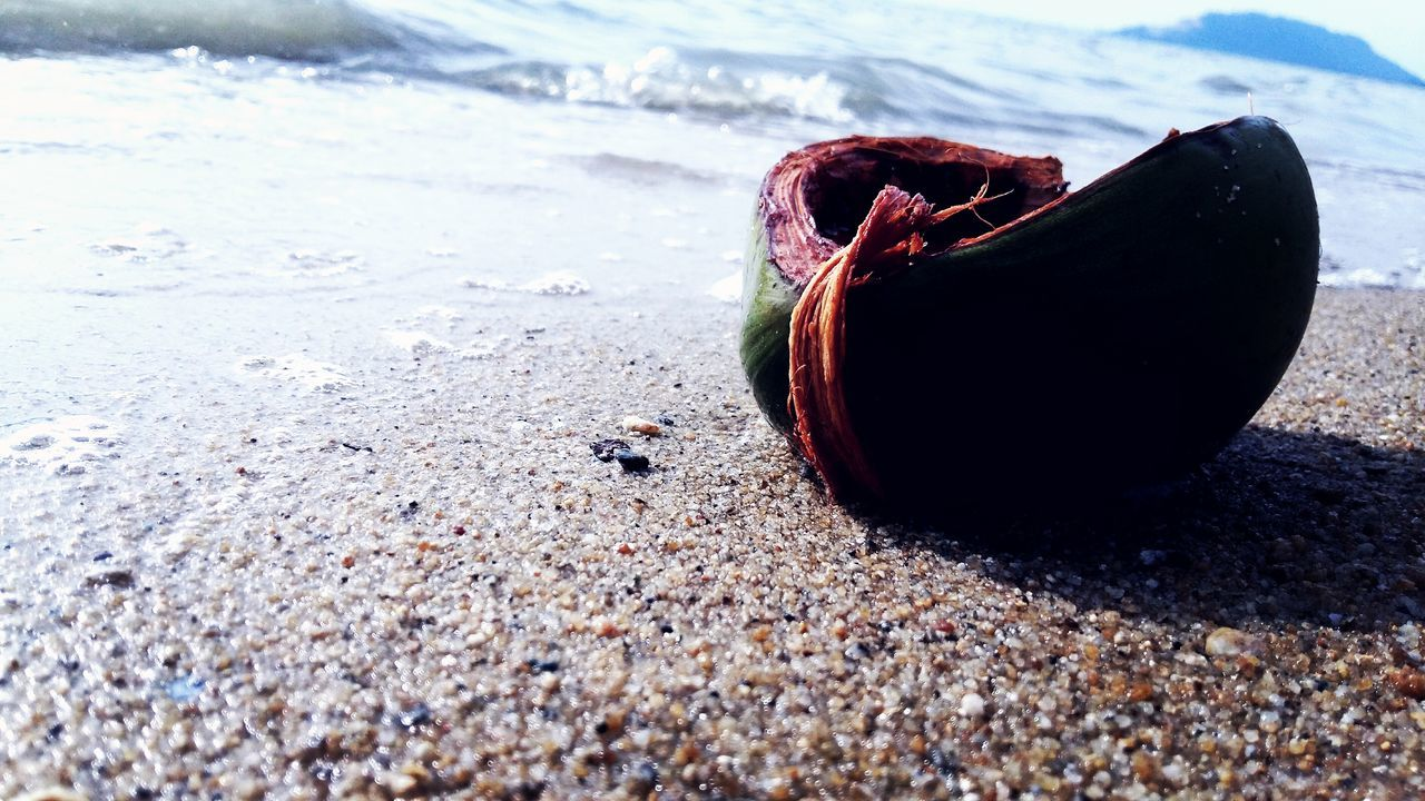 land, beach, sand, day, nature, no people, sea, outdoors, sunlight, water, close-up, abandoned, still life, single object, solid, selective focus, beauty in nature, healthy eating, fruit, tranquility, pollution