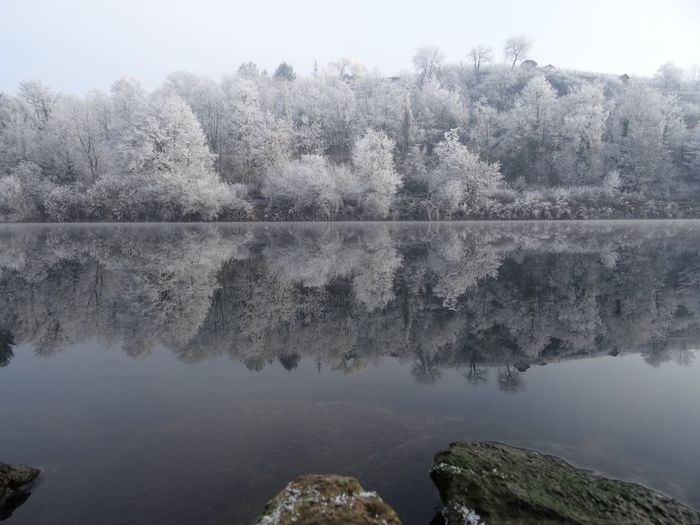 Tree Water Nature Reflection Scenics Beauty In Nature First Eyeem Photo Lake No People Tranquility Clear Sky Tranquil Scene White Frost Winter Perspectives On Nature New Year Symmetry Frost Snow Morning Germany Landscape Freshness EyeEmNewHere Neckar River