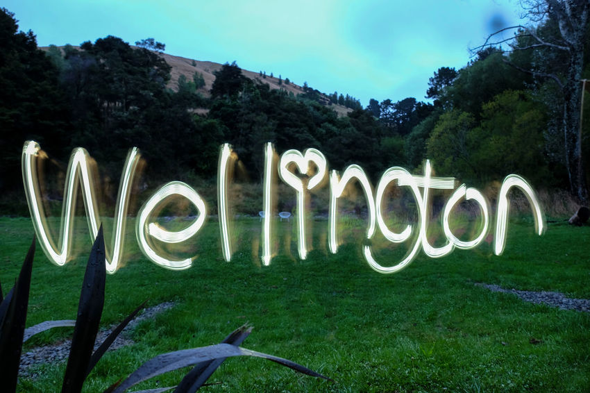 Writing Wellington with a lantern at night using delayed exposure. Creative Delayed Exposure Field Glow Grass Landscape Lantern Martinborough Nightphotography No People Outdoors Wellington