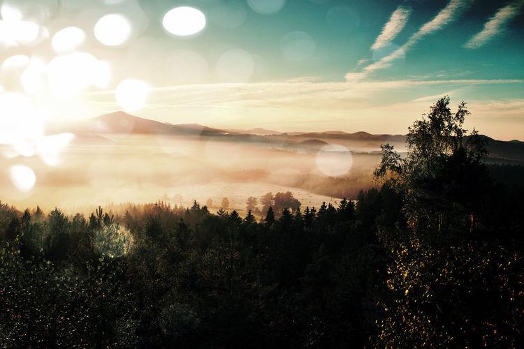 Film grain effect. amazing daybreak in saxony switzerland park. sandstone peaks increased from fog
